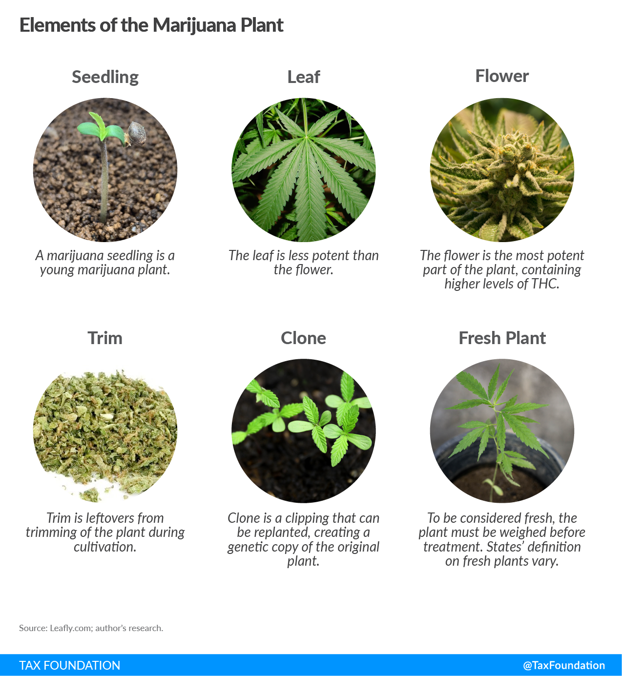 Elements of the Marijuana plant, Recreational marijuana tax, Marijuana taxation, cannabis tax